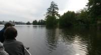 Uplynulo čtrnáct dní od vysazení štičky na Nežárce. Podařilo se námopět odchovatštičku na výtěrových rybníčcích.A na řadu přišel nasadit i rybník Vajgar. Vysazení jsme provedli z lodě. Rozvezli jsme jí […]